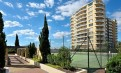 Rockdale Plaza 高层2房2卫Apartment 整租, 环境舒适, 极为方便, 3月入住