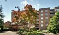 2018.1月起 Breyer Estates,Elkins Park $750 电费 带车库 Salus University