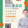 专业NAATI培训CCL培训雅思英语提高 高