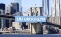 3841美元起 纽约布鲁克林 景观豪华公寓出租 步行6分钟到LIU长岛大学布鲁克林分校 屋新天推荐