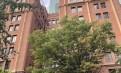 纽约曼哈顿中城门卫电梯公寓一室一厅$2800/月在租